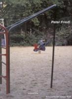 Peter Friedl