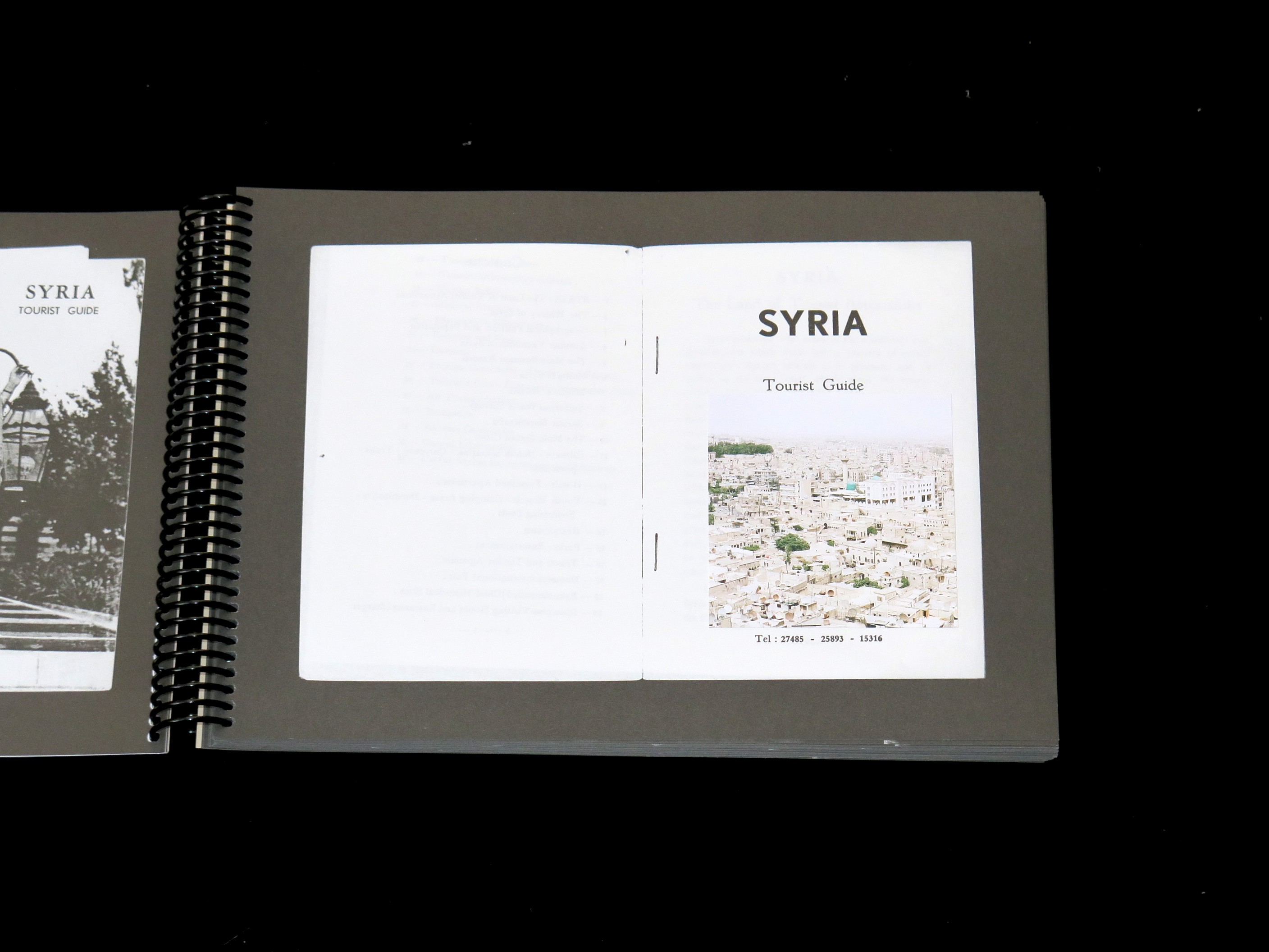 Giovanna Silva Syria A Travel Guide To Disappearance