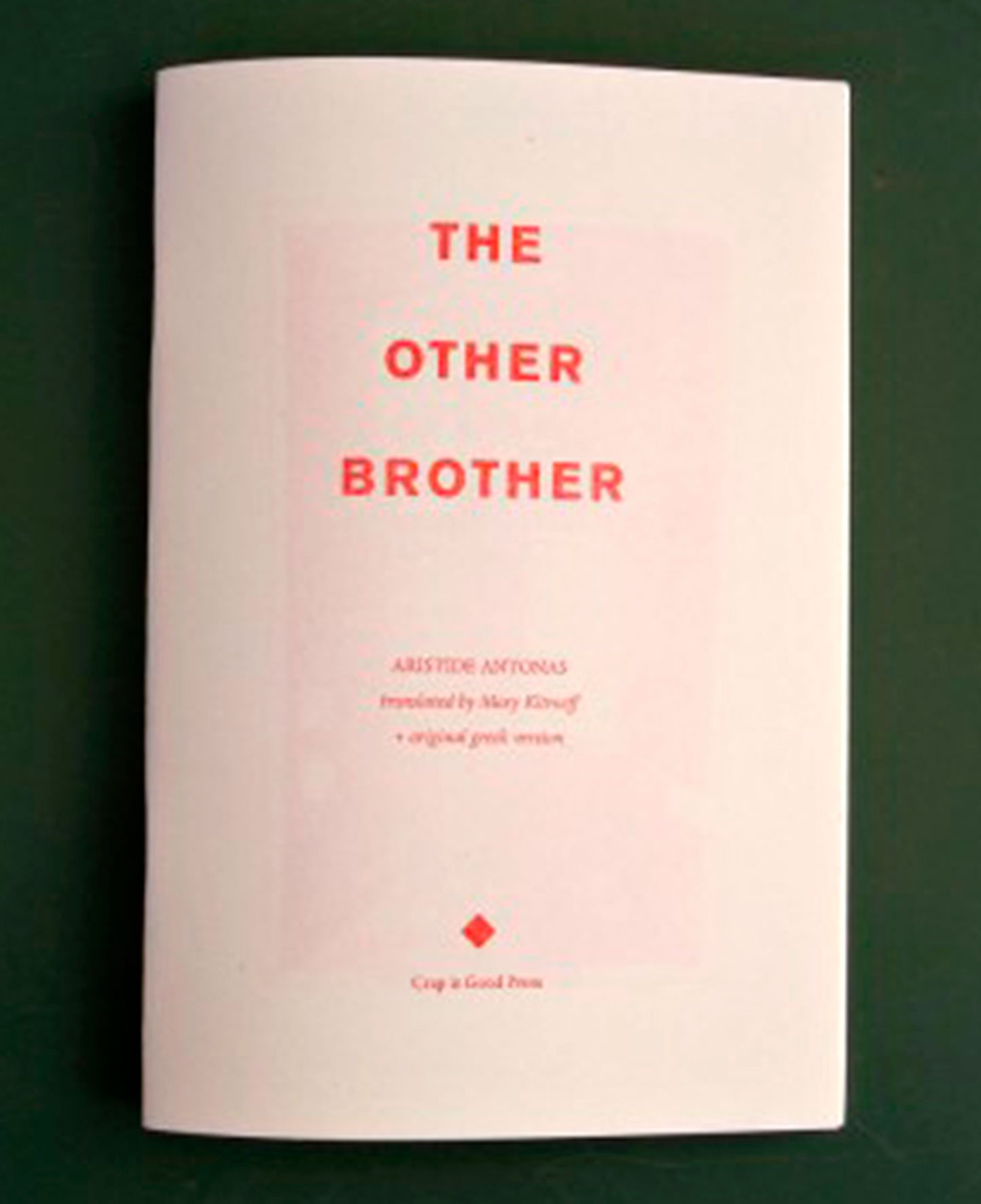 the other brother book