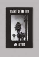 Palms of the Fog