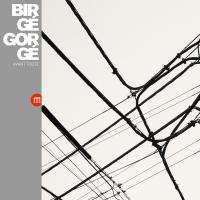 Jean-jacques Birgé & Francis Gorgé - Avant Toute (LP)