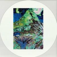 Color Attic (LP)