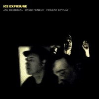 Ice Exposure (vinyl)