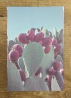Nombre y forma 2 (postcard)