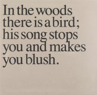 IN THE WOODS THERE IS A BIRD... (LP + BOOK Version)