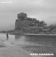 RAVI SHARDJA : Grün ist grau