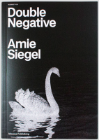 RICOCHET #10. Amie Siegel: Double Negative