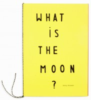 'What is the moon?'