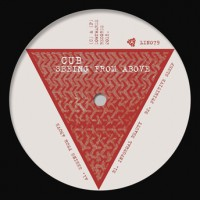 Seeing From Above (vinyl)
