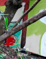 Vivian Suter