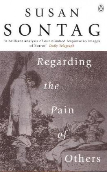 regarding the pain of others susan sontag summary