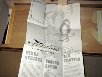 birdsairports_philippe_desarzens_0472