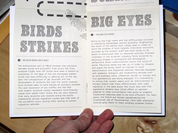 birdsairports_philippe_desarzens_0475
