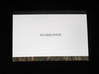 SZCZESLIWICE_raster_editions_motto_04