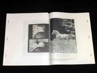 incredibly_small_photobooks_APE_motto_06