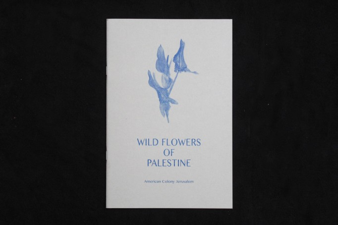 wild flowers palestine_motto distribution1