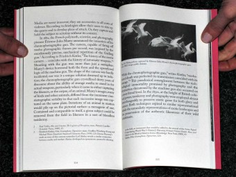 LAND_ANIMAL_NONANIMAL_Anna-Sophie_Springer_Etienne-Turpin_K_Verlag_HKW_Motto_Distribution_4