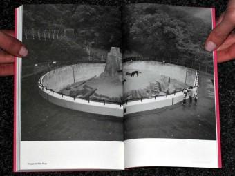 LAND_ANIMAL_NONANIMAL_Anna-Sophie_Springer_Etienne-Turpin_K_Verlag_HKW_Motto_Distribution_5