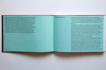 nello_stesso_momento_alessandra_spranzi_humboldt_books_motto_distribution8