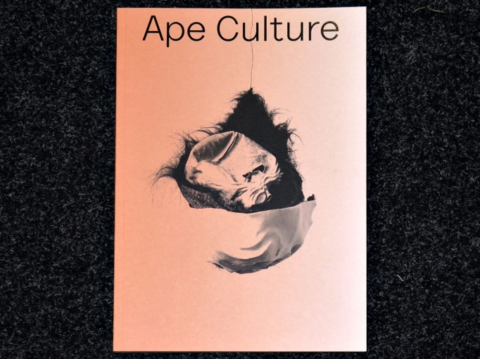Ape_Culture_Anselm_Franke_Hila_Peleg_spector_books_motto_distribution_1
