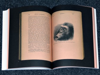 Ape_Culture_Anselm_Franke_Hila_Peleg_spector_books_motto_distribution_5