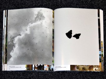beastly_tierisch_Duncan_Forbes_Daniela_Jansen_spector_books_motto_distribution_06