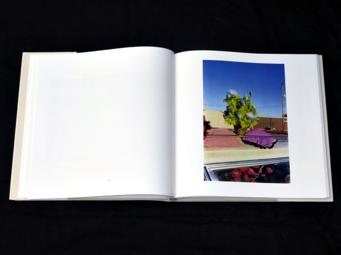 William_Eggleston_Los_Alamos_Scalo_motto_distribution_4