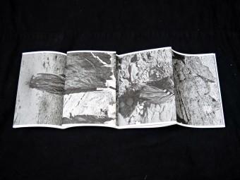 palimpsest_sebastiencapouet_motto_book_file6