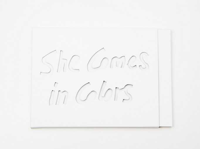 Florian_Braakman_She_Comes_in_Colors_Motto_1