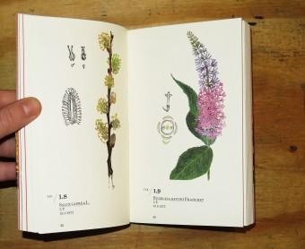 railwayflora_ernestoschick_florette_humboldtbooks_motto_8