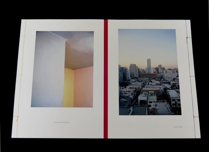 Landscape in Modern Architecture.  Tamami Iinuma(ed.)