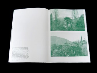 Palm Tree Studies in South Tyrol and Beyond, Nanna Debois Buhl, Humboldt Books 10