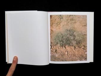 Sedimentality_Linn Pedersen_Lord Jim Publishing_Motto books_ 9788299731898_8
