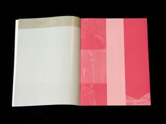 Michael Rampa_Strappato_Micronaut_Motto books_2017_2