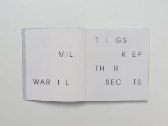 things_keep_their_secrets_emily_wardill_motto_books_bergen_kunsthall_motto_2