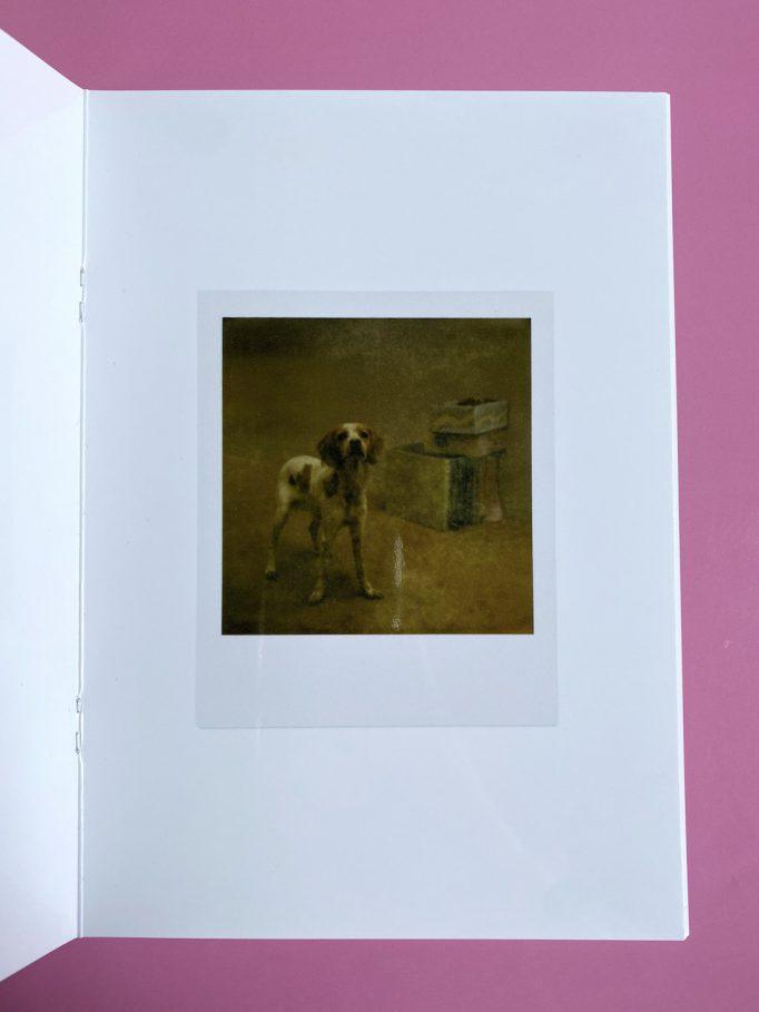 cardboard-box-julien-carreyn-motto-books-crevecoeur-anywave-7