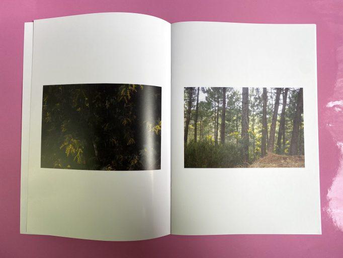 cardboard-box-julien-carreyn-motto-books-crevecoeur-anywave-8