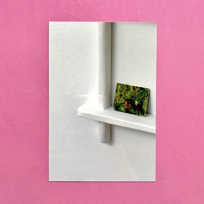 ibis-mimosa-tchering-julien-carreyn-motto-books-crevecoeur-anywave-10