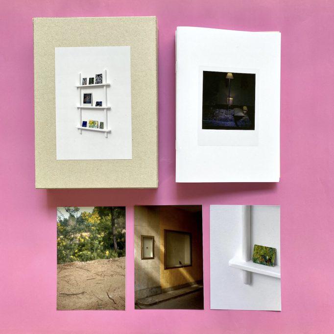 ibis-mimosa-tchering-julien-carreyn-motto-books-crevecoeur-anywave-4