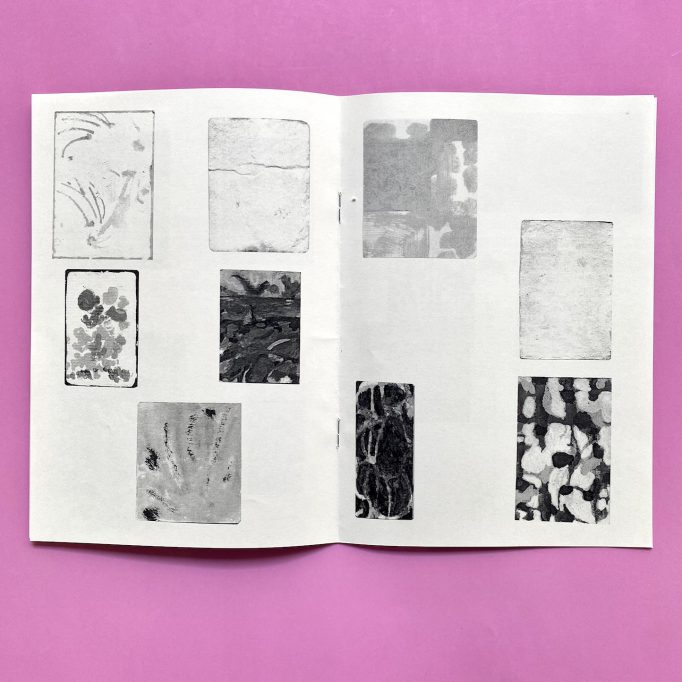 ibis-mimosa-tchering-julien-carreyn-motto-books-crevecoeur-anywave-9