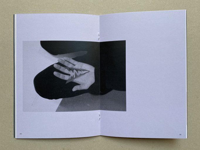 dandelion-menace-claude-eigan-self-published-6