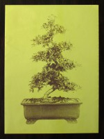 Bonsai - Special Edition Offset Poster