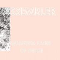 IW-30: Assembler – Quantum Paths of Desire