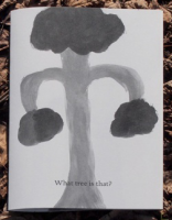 What tree is that ?