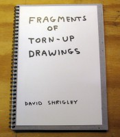 Fragments Of Torn-Up Drawings