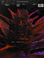 Kaleidoscope #36/SS20 - CANNABIZ / THE GENTRIFICATION OF WEED