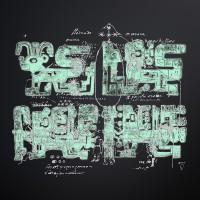 ORCORARA 2010 (LP)