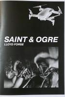 Saint & Ogre