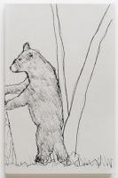 Sketches from a Google Safari