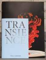 Transience - Art Issue #4
